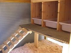 turning shed into chicken coop - Google Search