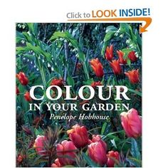 Penelope Hobhouse - this is still the best text about colour in the garden on the market.