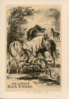 Emil Kotrba / lithograph / ex-libris / horses / colt / printmaking / art / decor / bookplate / animals
