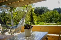 Check out this awesome listing on Airbnb: Trullo aromatic green in Ostuni