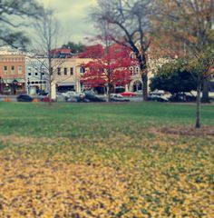It's a nice 55 degrees right now. It is December, right? morgangster:  I am so ready for it to be colder… but I am not complaining about how beautiful Athens still is with its leaves…
