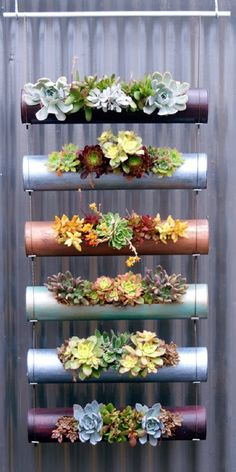 Creative Design Ideas Of Vertical Garden