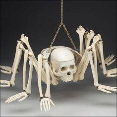 """The Spidy Skeleton: The Unholy Spawn of """"Arachniality"""""""