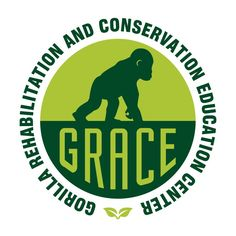GRACE - Our mission is to provide the best facilities and care for rescued Grauer's gorillas in the Democratic Republic of Congo while working alongside local communities to ensure gorilla survival in the wild.[READ MORE. Houston Zoo, Veterinary Care, Blue Ribbon, Read More, Conservation, Animal Rescue, Management, Animals, Bottle Caps