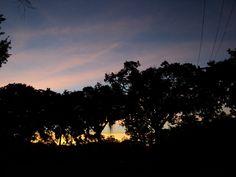 Quinta da Boa Vista, RJ