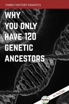Do you know how many genetic ancestors you have? discover how much of your ancestry DNA percentages are in your dna test results. Ancestry Dna, Genealogy Research, Family Genealogy, Dna Test Results, Dna Genetics, Genealogy Organization, My Family History, Teaching Biology, Life Science