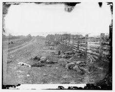 Alexander Gardner Pioneered Battlefield Photography in the Civil War: Alexander Gardner Photographed the Carnage Following the Battle of Antietam