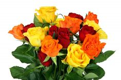 Roses Bouquet Unforgettable – Bouquet of Flowers Good Morning Gif, Good Morning Wishes, Early Morning, Honey Hair Treatments, Bouquet Images, Colorful Roses, Flower Pictures, Flowers Pics, Gif Pictures
