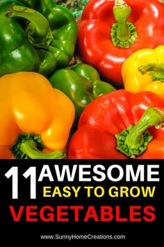 11 Awesome easy to grow vegetables for beginners. These are perfect for your backyard veggie garden. hotel restaurant travel tips Easy Vegetables To Grow, Types Of Vegetables, Planting Vegetables, Veggies, Backyard Vegetable Gardens, Outdoor Gardens, Garden Landscaping, Gardening For Beginners, Gardening Tips
