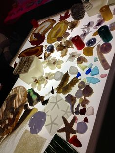 LET THE BRIGHT LIGHT SHINE. A light table with an array of natural materials lets the children explore the shapes and light passing properties of the materials in detail.