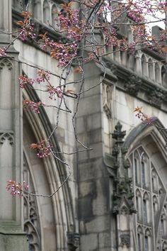 ¡¡El Reino Unido está muy cerca con Monarch!! Supersale hasta el 30 de Abril!!   www.1000tentaciones.com      (Manchester by Ed O'Keeffe)