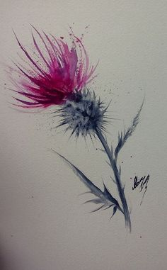 """Clare Innes-Thistle Watercolor 12 x 7 """"(sold and on its way to America) - F . - Clare Innes-Thistle Watercolor 12 x 7 """"(sold and on its way to America) – Françoise Sauvet – W - Watercolor Feather, Watercolor And Ink, Watercolor Flowers, Watercolour Tattoos, Watercolour Paintings, Diy Tattoo, Tattoo Ideas, Tattoo Designs, Art Floral"""