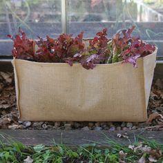 Naturlig och dekorativ odlingssäck i jute. Passar till de flesta växter och grönsaker. Idealisk för odling på små ytor och vid transport av växter. Plastbeklädd insida med dräneringshål i botten. Bärhandtag.
