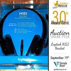 Logitech, 30 Years, Headset, Picnic, Auction, Facebook, Amazing, Check, Hockey Helmet