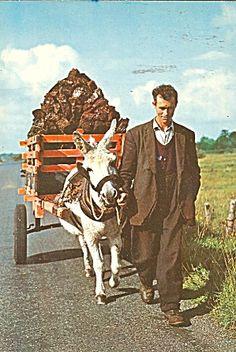 Ireland Donkey and Cart 1970 Postcard cs10165