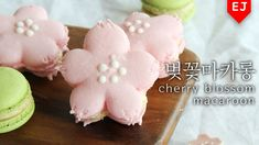 벚꽃 마카롱 만들기 how to make cherry blossom macaroon 桜マカロン [이제이레시피:EJ recipe]