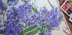 Jacaranda Painting - A Major Work in Watercolour - Heidi Willis Day And Time, No Time For Me, Textures And Tones, Heart And Mind, Big Picture, Watercolour, Behind The Scenes, Things To Come, Colours