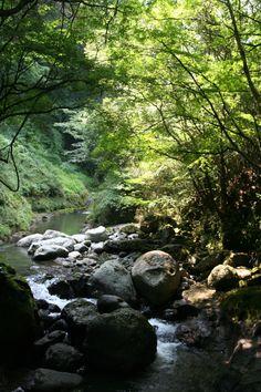 <08>川沿いを歩きます。だんだん好きな風景になってきた♪
