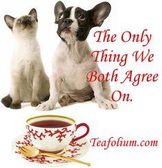 We Agree On Tea