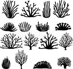Hand Drawn Corals On White. Silhouette Icons Stock Vector - Illustration of collection, anemone: 57394511 Arte Coral, Coral Art, Coral Drawing, Sea Drawing, Doodle Drawing, Ocean Themes, Sea Creatures, Under The Sea, Clipart