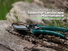 Start the new year right by planning out your #landscape #maintenance for the next four seasons. Here are a few #tips to help you preserve the #beauty of your #garden.