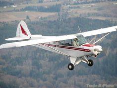 Piper Super Cub Series    http://www.trade-a-plane.com/search?s-type=aircraft==Piper_group=Super+Cub+Series_size=25=1=4=0