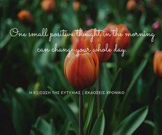 11|3|2018  #ΗΕξίσωσηΤηςΕυτυχίας #Happiness #DailyHappinessQuote #ΕκδόσειςΧρονικό Good Week, Positive Thoughts, You Changed, Positivity, Make It Yourself, Day, Plants, How To Make, Plant