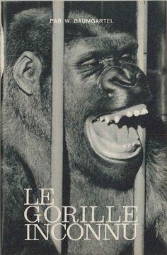 Le gorille inconnu, reportage de Walter Baumgartel - Atlas Histoire, mars 1963