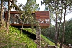 Интерьер дома в лесу с садом на крыше и прекрасным видом из окна от студии Espacio EMA, Халиско, Мексика