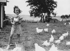 Lil girl with her chickens   ❤️☀️