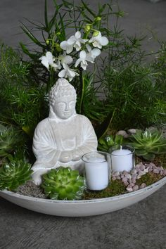 Beautiful zen garden created with lots of succulents, orchids, fern plants with a buddha and candles in the center, perfect gift idea for a