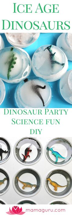 5 Awesome Dinosaur Party Activities! Use these ideas for a fantastic dinosaur party or as a part of a dinosaur lesson plan. Kids love the variety of activities, which include Melting Ice-Age Dinosaurs, a Dinosaur Dig, Cracking Dinosaur Eggs Open, Erupting a Volcano, and Painting a Dinosaur. All of these are inexpensive and DIY, but will impress and engage children. These activities are ideal for kids in preschool through early elementary school.