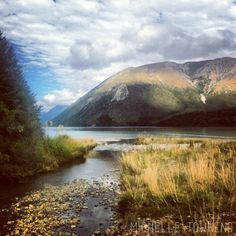 St Arnaud {also known as Rotoiti}, Nelson Lakes area | 2013 © Michelle Townend