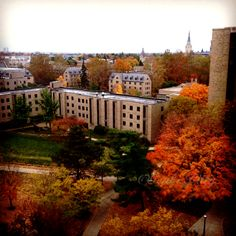 University of Notre Dame in Autumn.  #notredame #university #fall #autumn