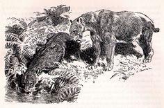 Smilodons, Z. Burian