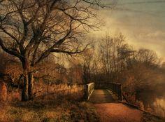 Kauf 'Der Weg' von Raven Art auf Leinwand, Alu-Dibond, (gerahmten) Postern und Xpozer.