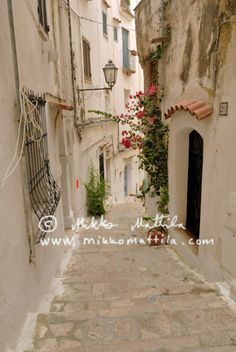 Buy a vacation home in Italy for me and extended family to visit