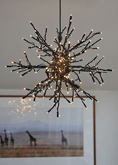outdoor star light...lights on the twigs from your tree ;)