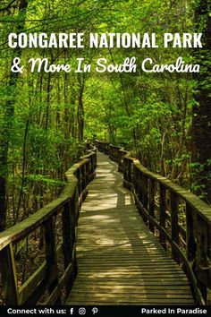 South Carolina is a great state to visit if you're looking for a mix of historical parks and rugged outdoor experiences. Hilton Head or Myrtle beach there is tons of stunning weekend getaways. Plan a South Carolina beach vacation or road trip with the kid to Congaree National Park. This guide will help you plan out things to do and places to visit in South Carolina.