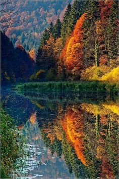 Wonderful Autumn Reflections