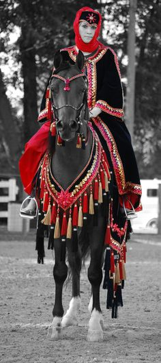 Another incredible file I found in my harddrive yesterday! This was during the Arabian Show in the Costume Show. Photograph©Shawnie J. Peck The Desert Watcher Akhal Teke Horses, Dressage Horses, Friesian Horse, Beautiful Arabian Horses, Most Beautiful Horses, Pretty Horses, Arabian Horse Costume, Horse Costumes, Arabian Costumes