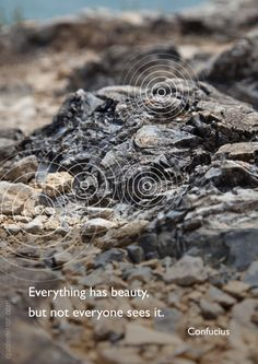 Everything has beauty, but not everyone sees it. –Confucius #beauty #confucius #recognition http://quotemirror.com/s/937rz