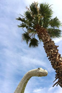 Cabazon Dinosaurs - roadside attraction outside of Palm Springs | Sundays and Somedays