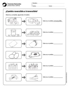 ¿Cambio reversible o irreversible? Chemistry Lessons, Worksheets For Kids, Science Activities, Teaching English, Science And Nature, Classroom, How To Plan, Education, School