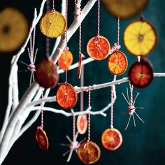 Style with a difference! Give your Christmas tree a uniquely fruit touch. Dry out think slices of citrus fruits in the oven on low heat for a few hours, then cool off and hang them off your tree using decorative string. #Woolworths #Decoration #Christmas #Inspiration #Fruit #Christmastree