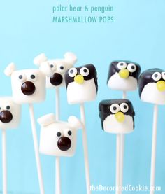 These cute polar bear and penguin marshmallow pops are a cinch to make! A fun and easy winter treat. Winter animals as fun food. Holiday Treats, Christmas Treats, Christmas Baking, Christmas Chocolates, Polar Bear Party, Cute Polar Bear, Penguin Birthday, Penguin Party, Penguin Cakes