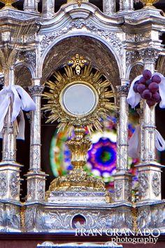 Imágenes Cofrades Fran Granado: Arahal volcado con Jesús Sacramentado 2014 1ªParte...