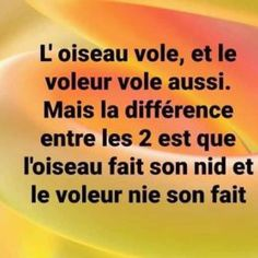 Funny Facts, Funny Quotes, Funny Memes, Jokes, A Silence Voice, French Expressions, Puns, Illusions, Affirmations