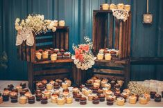 Cupcakes! Rustic Barn Country Shabby Chic Lace Coral and Navy Wedding Decor