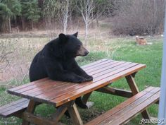 They told me to be here at noon. Where's my lunch?